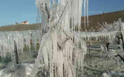 Extremwetter: Bizarre Eiswelt in Bayern, drastische Schutzmaßnahmen gegen Frost, mit Eis gegen den Frost um die jungen Obstblüten zu schützen, beeindruckende Drohnenaufnahmen, Bauer im O-Ton: Schutz vor Frostschäden: Drohne zeigt bizarre Eislandschaft zwischen den Weinbergen