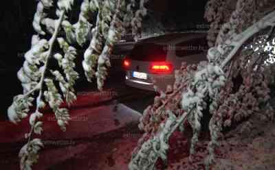 """Intensiver Wintereinbruch: Erzgebirge bekommt über 5 cm Neuschnee, Bäume ächzen unter Schneelast, Tulpen vom Schnee """"erdrückt"""", Biergärten mit viel Schnee bedeckt – der Winter ist wieder da!: Winterdienst muss Straßen salzen, Straßen teilweise spiegelglatt, tiefster Winter auf dem Fichtelberg"""