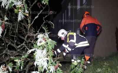 Heftige Nachtgewitter im Erzgebirge, Blitze im Sekundentakt: Bäume begraben Autos unter sich, Feuerwehren im Dauereinsatz