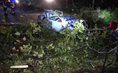 Herbst-Föhnsturm fordert Todesopfer - Baum begräbt fahrendes Auto unter sich - Fahrer sofort tot: Gutachter wurde angefordert - Rettungskräfte konnten nicht mehr helfen