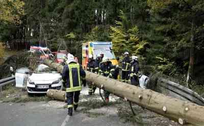 (Update)Baum kracht auf fahrendes Auto im Vogtland: Person wurde eingeklemmt und schwer verletzt: Eingeklemmte Person im PKW durch Baumschlag in Schnarrtanne