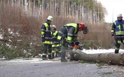 Sturmtief Friederike lässt Baum auf Staatsstraße fallen, Verkehr kommt komplett zum erliegen: Feuerwehr vor Ort, Bäume neben der Straße bogen sich gefährlich im Strum